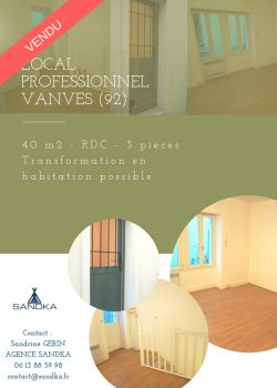 vanves local professionnel
